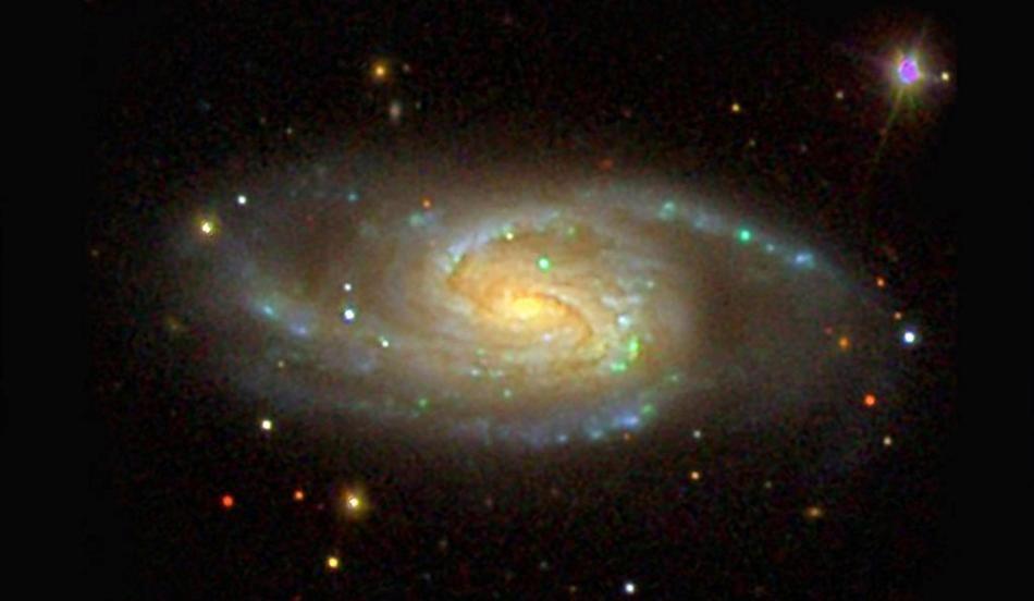 Research on Milky Way Siblings