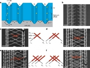 Scientists Make Great Effort to Build First Topological Quantum Computer