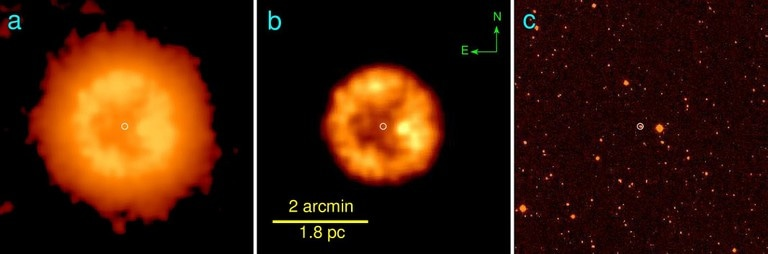 Astronomers from Bonn and Moscow Discover Extremely Rare Stellar Merger Product