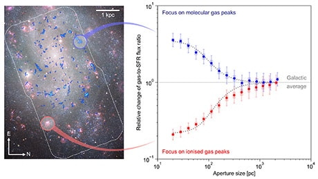 New Statistical Technique to Infer Progress of Star Formation Within Molecular Clouds
