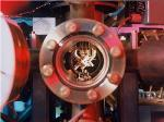 Researchers Reverse Quantum Measurement Using Quantum Error Correction Protocol