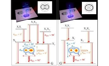 Polarized Emission from Coupled Quantum Dots is Strong Along Coupling Direction